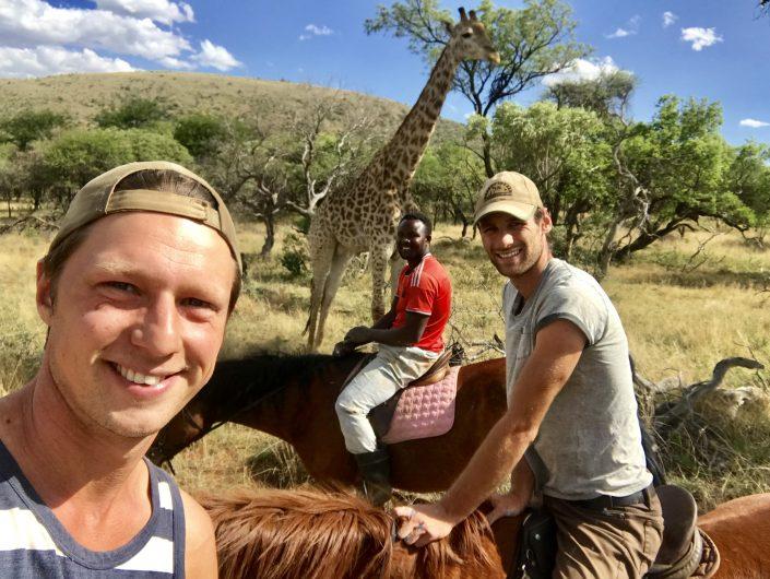 Dilo, Hessel en Howard te paard met een giraffe op de achtergrond