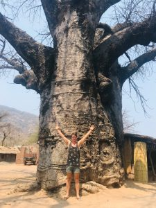 Dilo and a Baobab tree