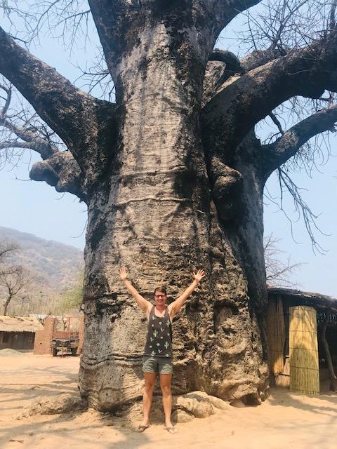Dilo next to a Baobab tree